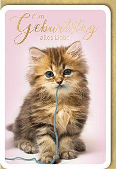 Geburtstagskarte süß Kätzchen mit blauer Schnur