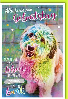 Geburtstagskarte lustig Mach dir das Leben bunt