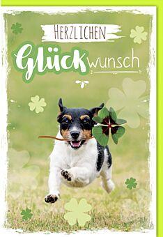 Glückwunsch - Hund mit Kleeblatt