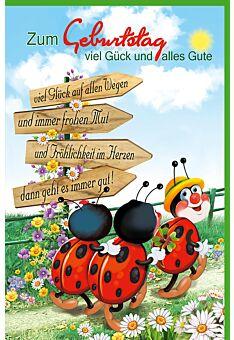 Glückwunschkarte Geburtstag Marienkäfer wandern