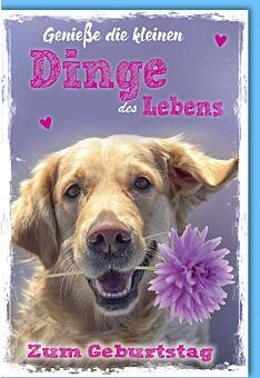 Glückwunschkarte Geburtstag Hund mit Blume