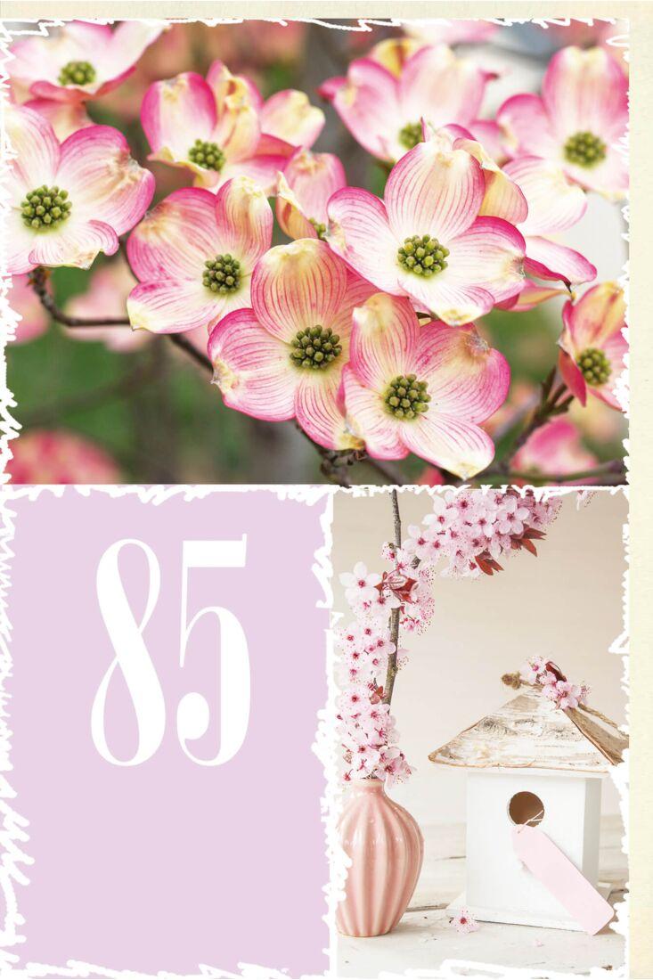 Geburtstagskarte 85 Jahre Blüten und Zweig in Vase mit Vogelhäuschen