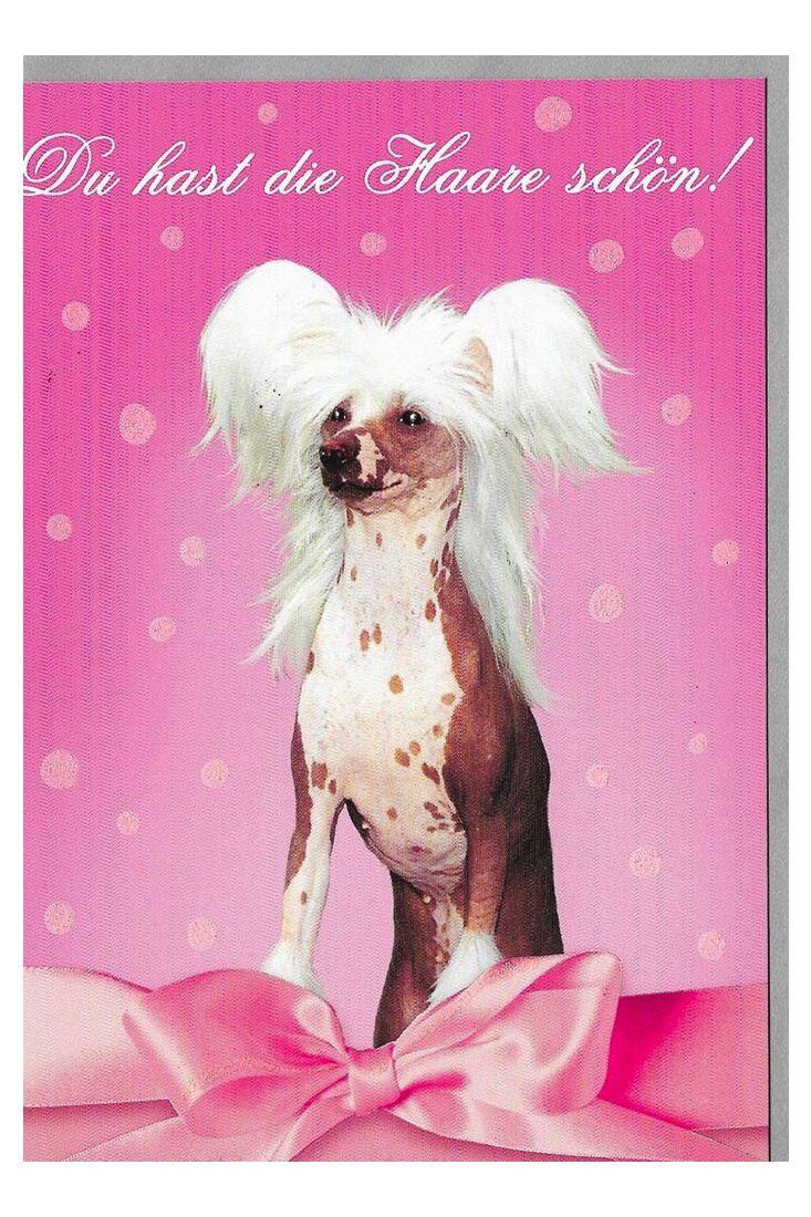 Geburtstagskarten für Frauen Geburtstagskarte Frauen du hast die Haare schön