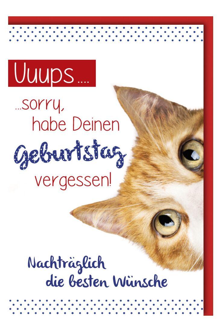 Geburtstagskarte - nachträglich, Katze