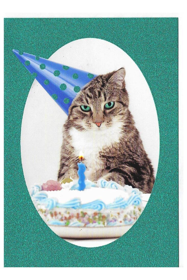 Grußkarten Geburtstagskarte Glimmerlack lustig Katze