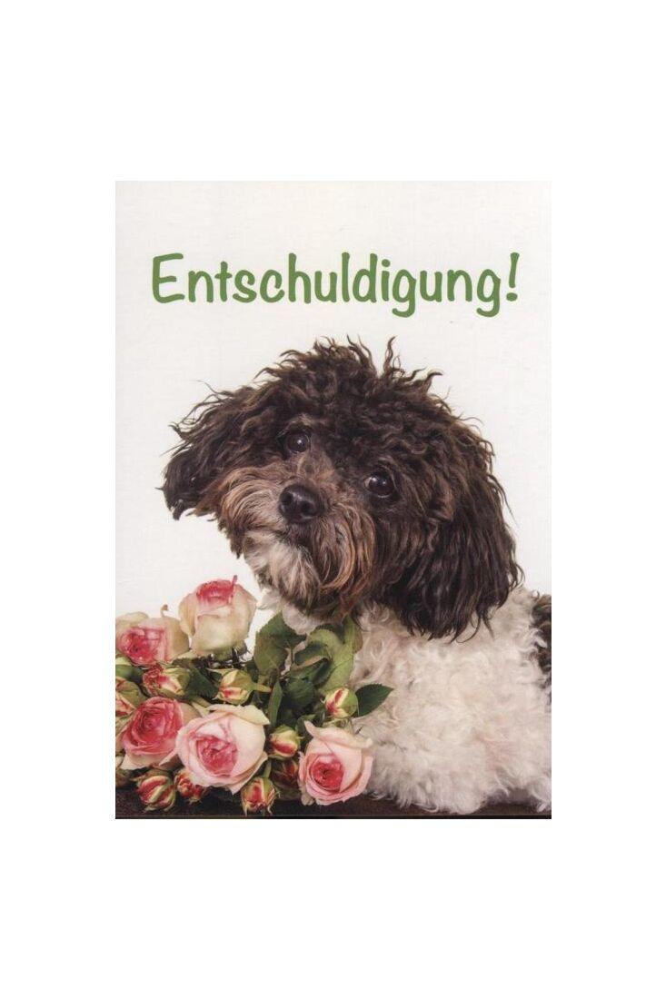 Postkarte Entschuldigung, Entschuldigungskarte Hund: