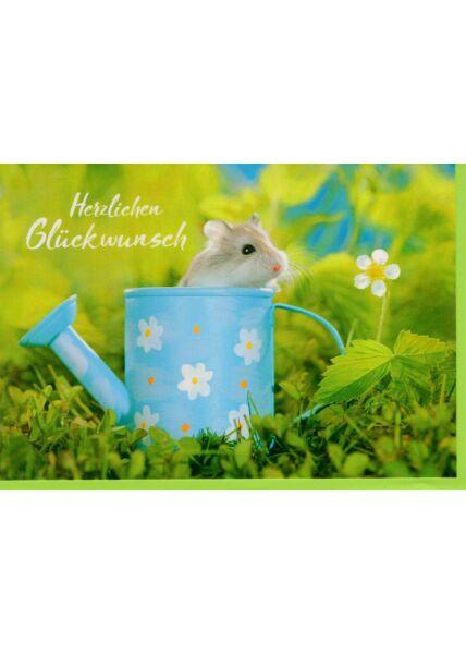 Glückwunschkarte Hamster in Gießkanne