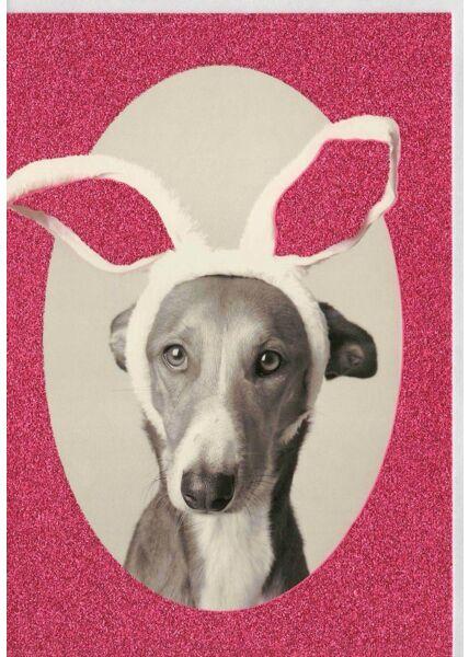 Grußkarte Glimmerlack Hund lustig