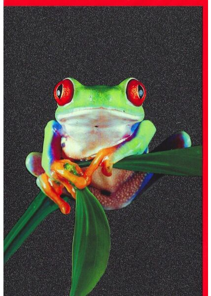 Grußkarte Glimmerlack Frosch lustig