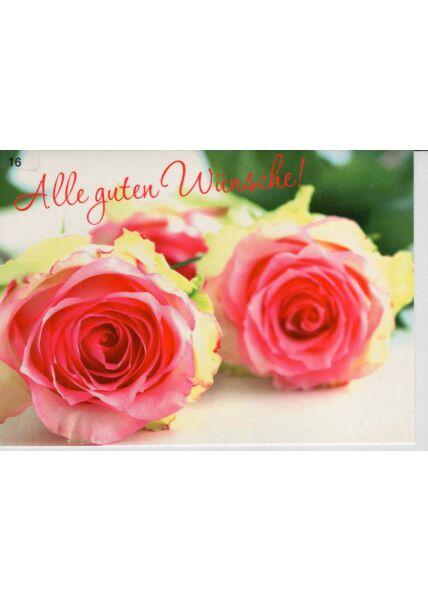Grußkarte alle guten Wünsche zwei Rosen