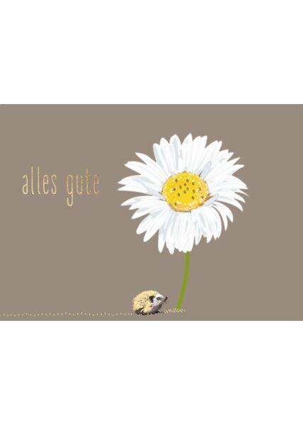 Postkarte Spruch Igel, Margerite - Alles Gute