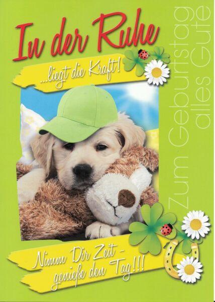 XXL Maxi Geburtstagskarte Hund Mütze