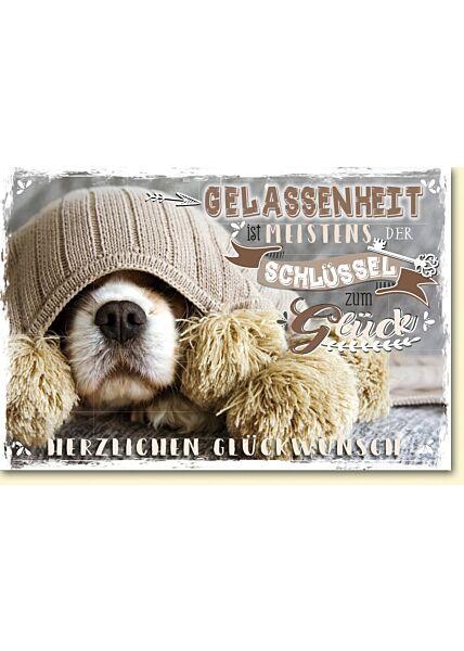 Glückwunschkarten Hundeschnauze im Strick