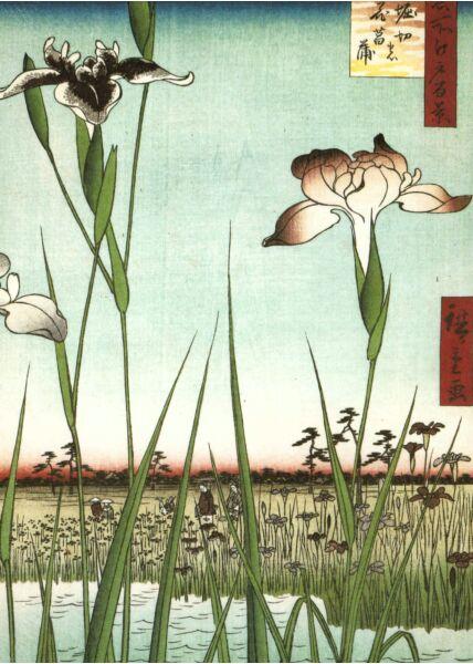 Kunst Postkarte Ando Hiroshige - Horikiri Iris Garden