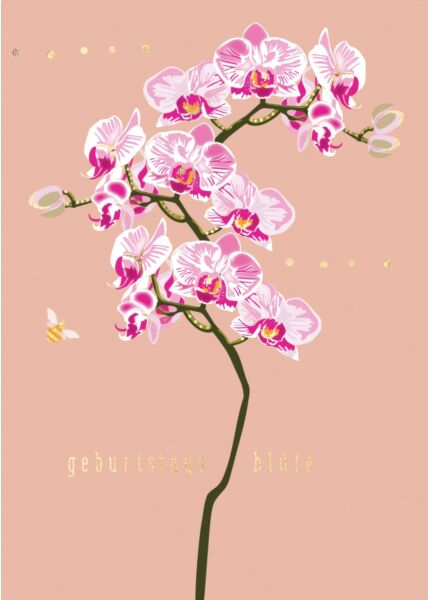 Geburtstagspostkarte Spruch Orchidee Geburtstagsblüte