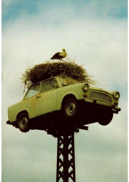 Postkkarte lustig Storch Auto Nest