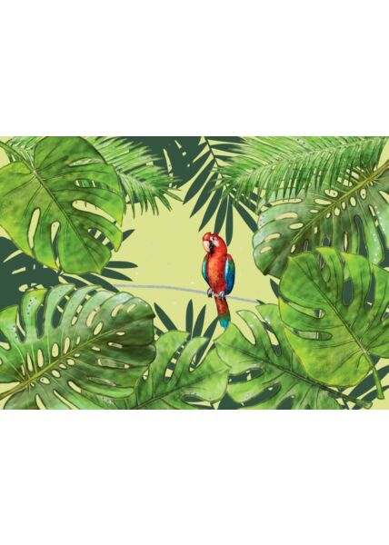 Postkarte Spruch Papagei