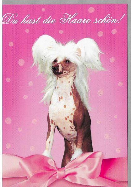 Geburtstagskarte Frauen du hast die Haare schön
