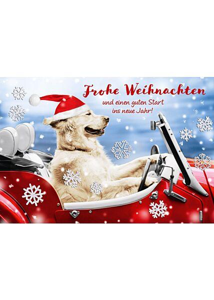 schöne Weihnachtskarte Hund Labrador Frohe Weihnachten und einen guten Start ins neue Jahr