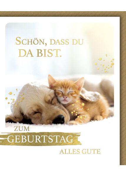 Glückwunschkarte Geburtstag Snapshot Katze Hund Schön, dass du da bist