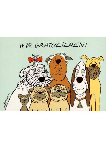 Postkarte Hunde Illustration Wir gratulieren