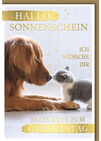 Glückwunschkarte Geburtstag allo Sonnenschein Hund und Katze