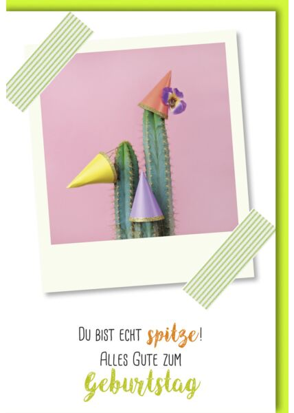 Geburtstagskarte lustig Geburtstag - Polaroid mit Kaktus