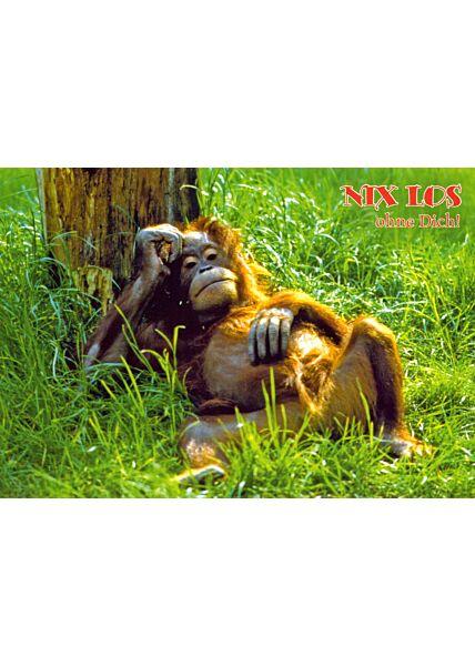 Postkarte Freundschaft Motiv Nix los ohne dich