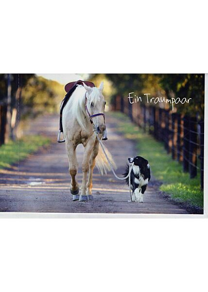 Grußkarte Freund/in: Pferd mit Hund