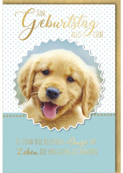 Geburtstagskarte Spruch Golden Retriever Welpe