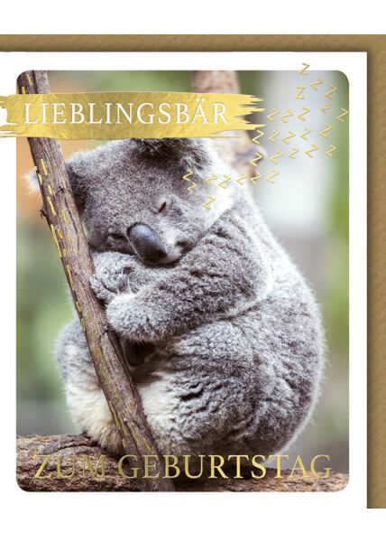 Glückwunschkarte Geburtstag Snapshot Lieblingsbär zum Geburtstag