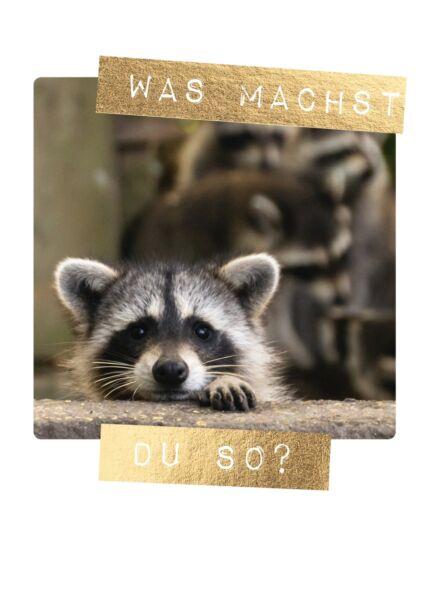 Postkarte Freundschaft Spruch was machst du so?