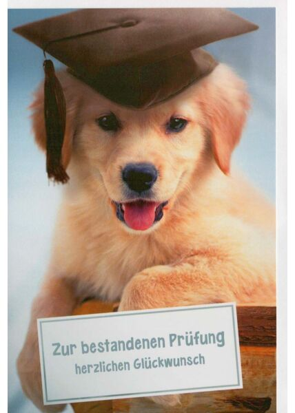 Glückwunschkarte Prüfung mit Hundemotiv