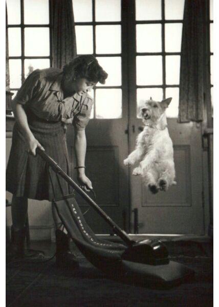 Postkarte schwarz weiß Vaccum Dog Jump