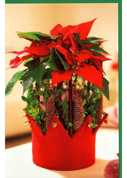 Weihnachtskarte Blankomotiv Blume Krone rot