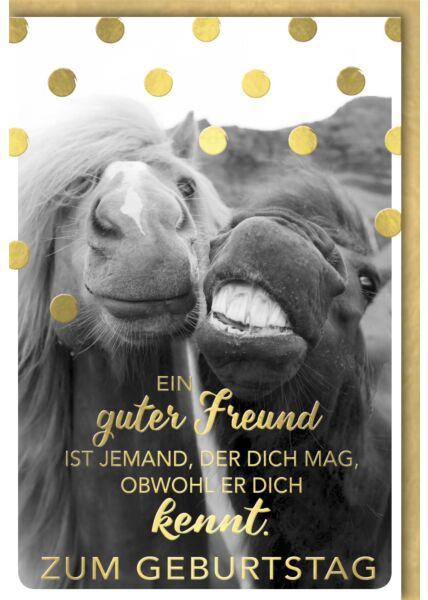 Geburtstagskarte lustig Spruch zwei Pferde