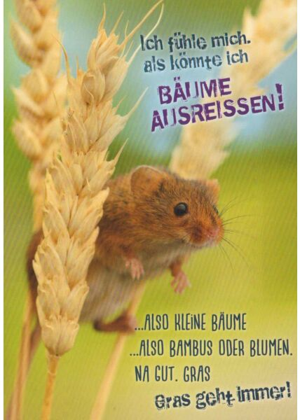 Postkarte lustig Spruch Gras geht immer