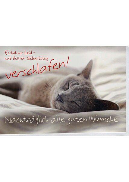Geburtstagskarte nachträglich: Katze schlafend