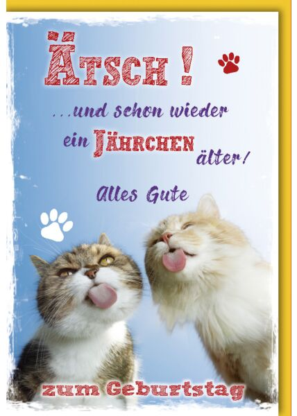 """Geburtstagskarte lustig """"Ätsch"""" Katzen"""