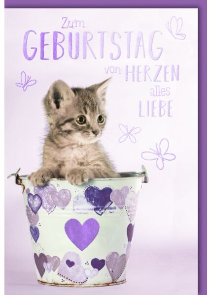 Geburtstagskarte Spruch Kätzchen im Eimer mit Herzen