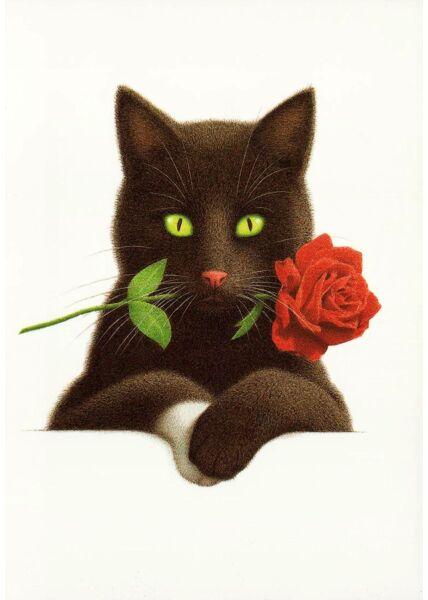 Postkarte Katze Rose Mund