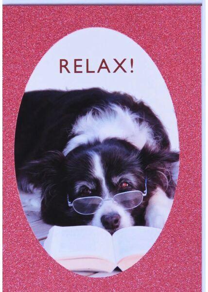 Grußkarte Hund Relax