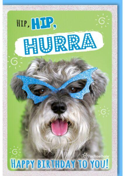 Geburtstagskarte witzig Hund mit blauer Glitzer-Brille