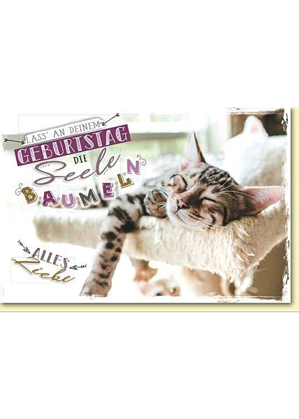 Geburtstagskarte mit Spruch schlafende Katze