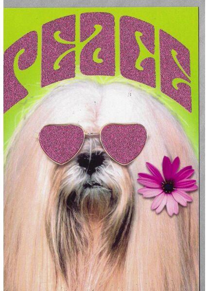 Grußkarte lustig Hund Peace