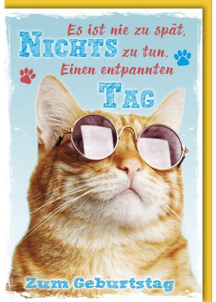 Geburtstagskarte witzig roter Kater mit Sonnenbrille