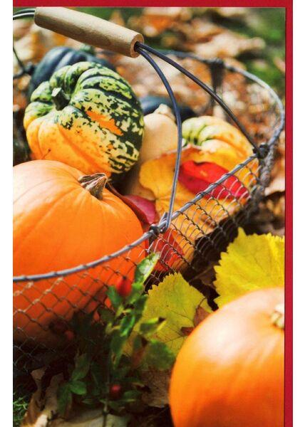 Grußkarte Kürbisse Motiv Herbst kein Text