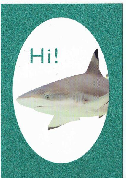 Grußkarte lustig Hi Glimmerlack