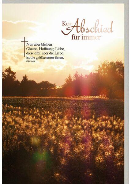 Trauerkarte Sonnuntergang über Wald und Feld, mit kupferfarbener Metallicfolie
