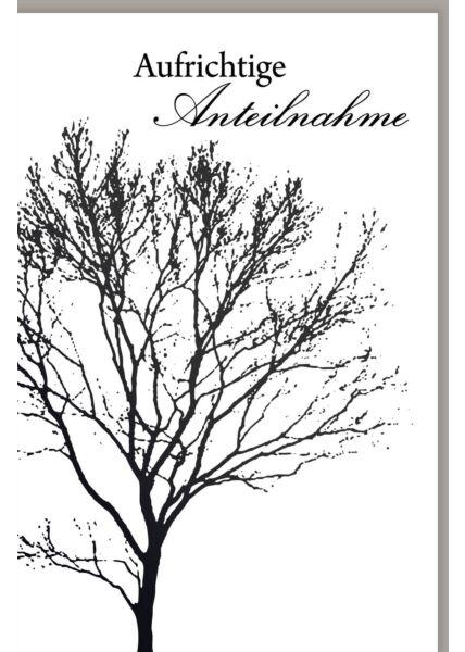 Trauerkarte Baum schwarz weiß Aufrichtige Anteilnahme